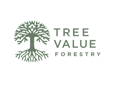 Rejected_logos_tree_value